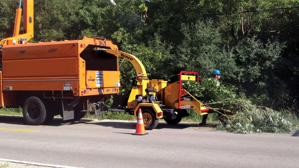 Commercial Tree Services-West Chase FL Tree Trimming and Stump Grinding Services-We Offer Tree Trimming Services, Tree Removal, Tree Pruning, Tree Cutting, Residential and Commercial Tree Trimming Services, Storm Damage, Emergency Tree Removal, Land Clearing, Tree Companies, Tree Care Service, Stump Grinding, and we're the Best Tree Trimming Company Near You Guaranteed!