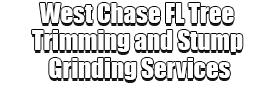 West Chase FL Tree Trimming and Stump Grinding Services Logo-We Offer Tree Trimming Services, Tree Removal, Tree Pruning, Tree Cutting, Residential and Commercial Tree Trimming Services, Storm Damage, Emergency Tree Removal, Land Clearing, Tree Companies, Tree Care Service, Stump Grinding, and we're the Best Tree Trimming Company Near You Guaranteed!